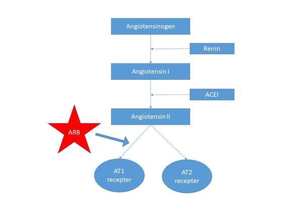 Cơ chế tác dụng của nhóm thuốc sartan