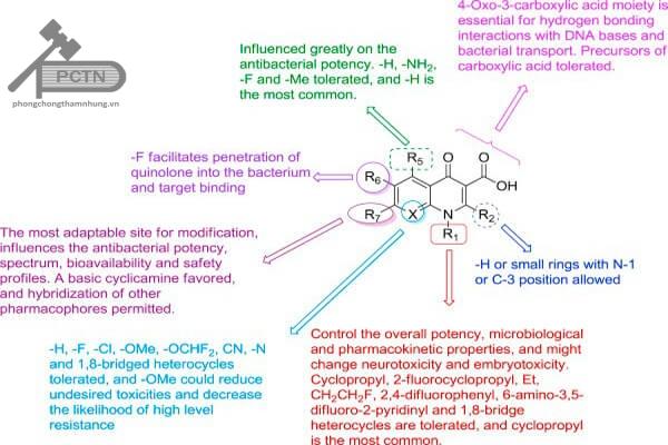 Công thức cấu tạo tổng quát của Quinolon và liên quan cấu trúc – tác dụng.