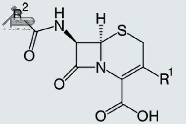 Công thức cấu tạo tổng quát của Cephalosporin
