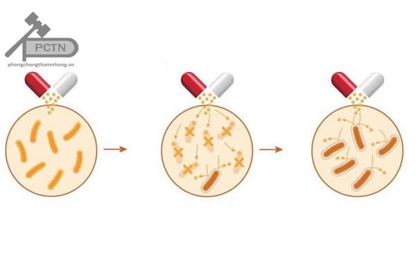 Kháng kháng sinh penicillin