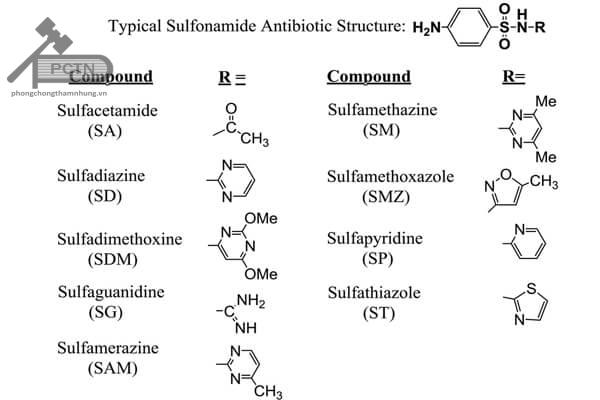 Công thức cấu tạo các sulfamid