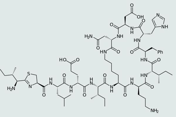 Công thức cấu tạo bacitracin A