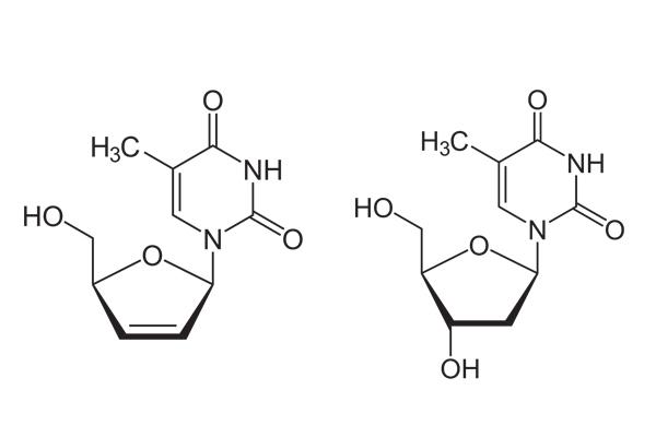 Công thức cấu tạo của stavudine (trái) và thymidine (phải)