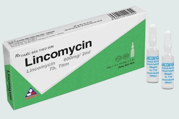Kháng sinh Lincomysin