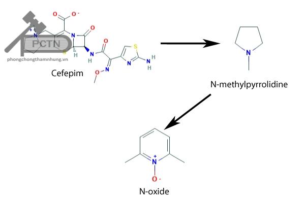 Chuyển hóa của cefepim