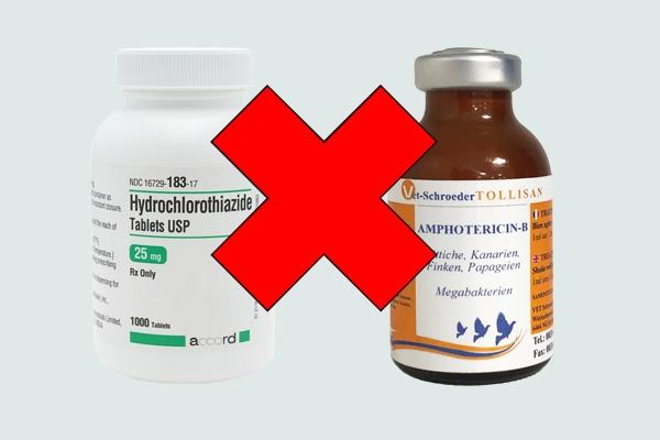 Tương tác thuốc hydrochlorothiazide và amphotericin B