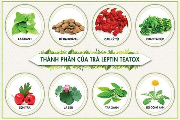 Tác dụng của Trà giảm cân Leptin Teatox