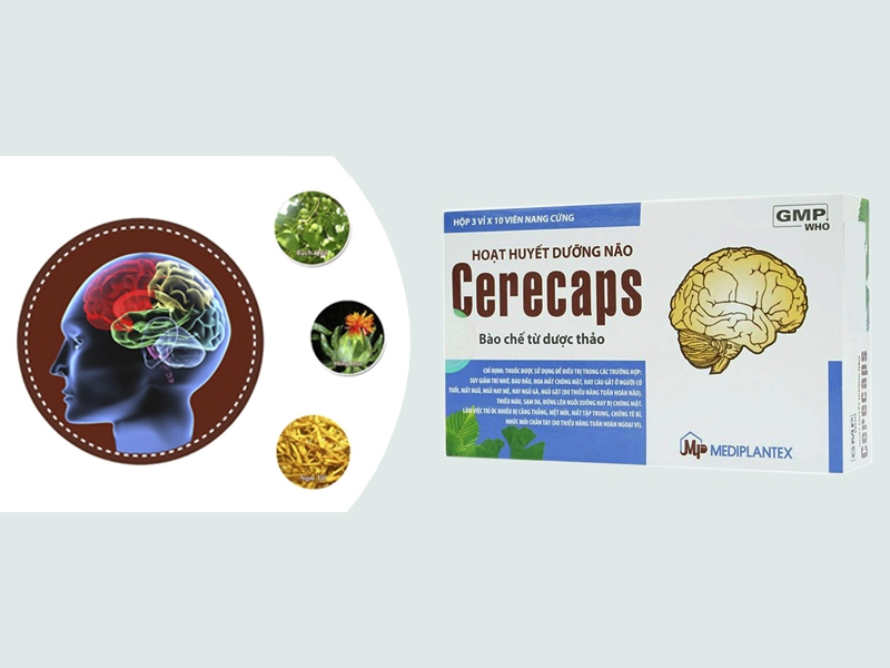 Thành phần của Cerecaps
